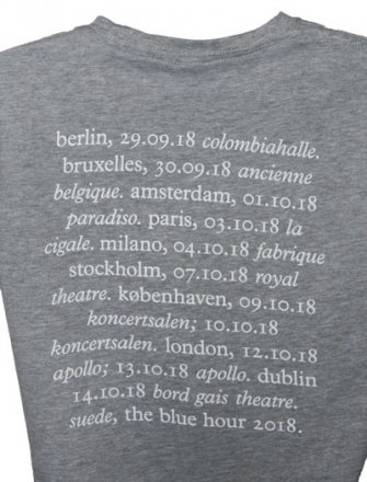 Ladies Grey Tour T Shirt With 2018 Tour Date Back Print
