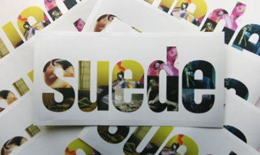 Suede Logo Stickers x 2